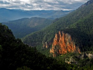 Valle del Alto Segura