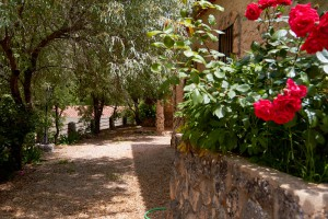 Zona lateral de las casas rurales en Yeste - Casas Rurales Amable