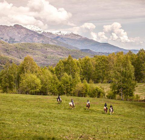 Actividad rutas a caballo. Casas rurales en Yeste - Casas Rural Amables